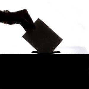 élections Diémoz