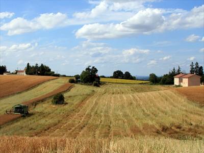 Agriculture Diémoz - production céréales